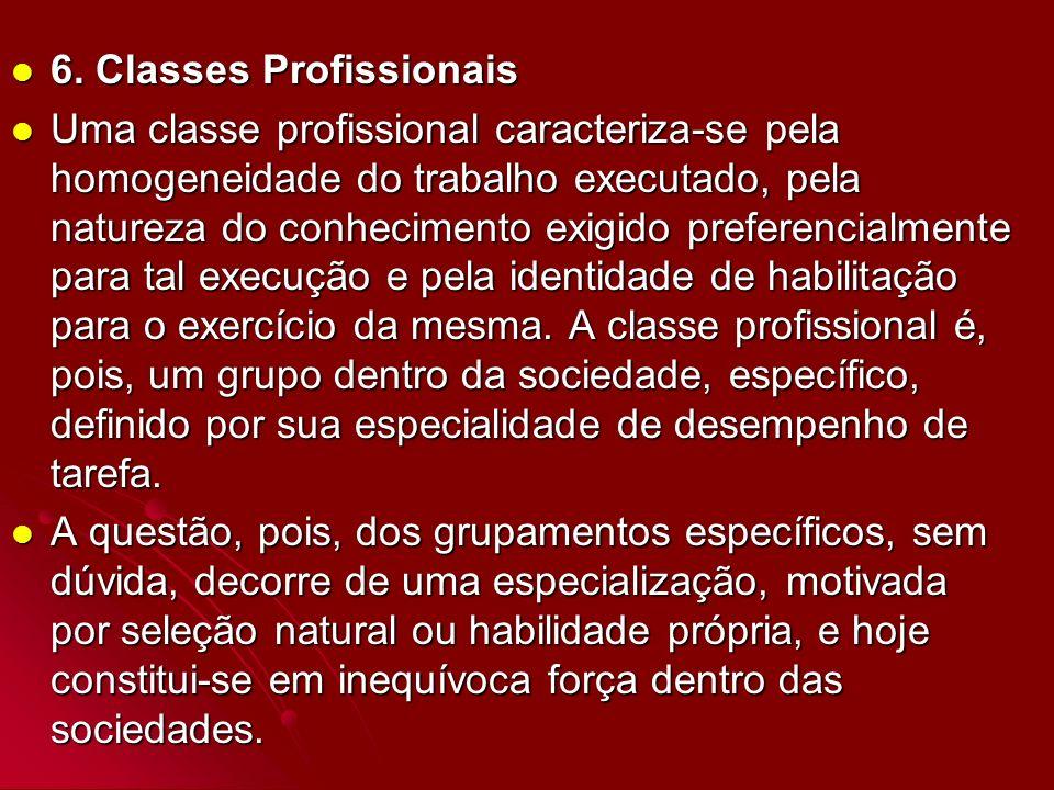 6. Classes Profissionais