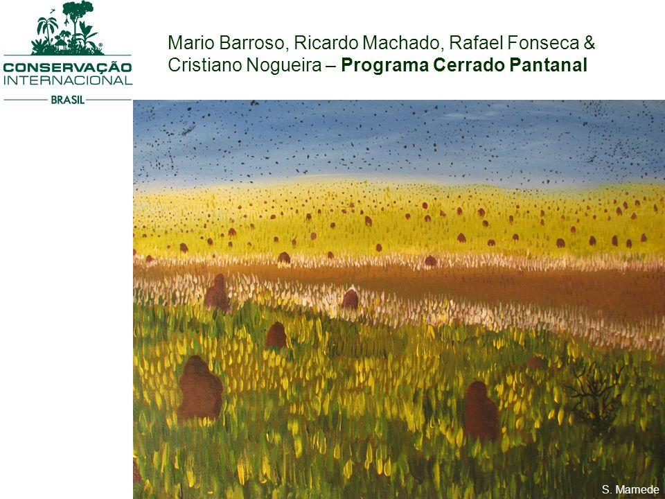 Mario Barroso, Ricardo Machado, Rafael Fonseca & Cristiano Nogueira – Programa Cerrado Pantanal