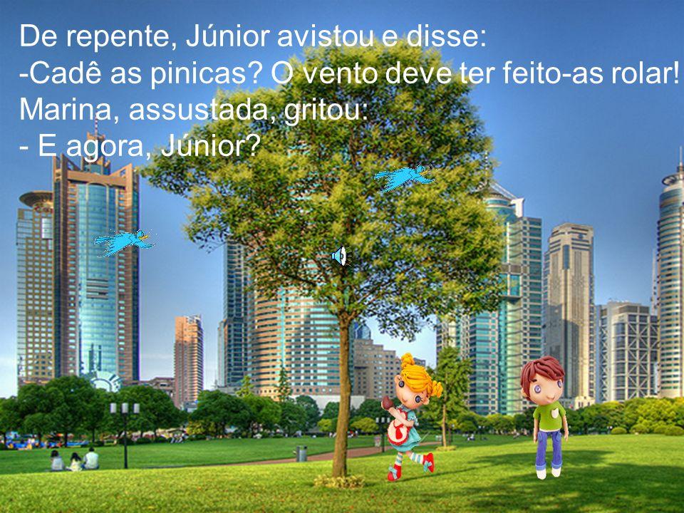 De repente, Júnior avistou e disse: