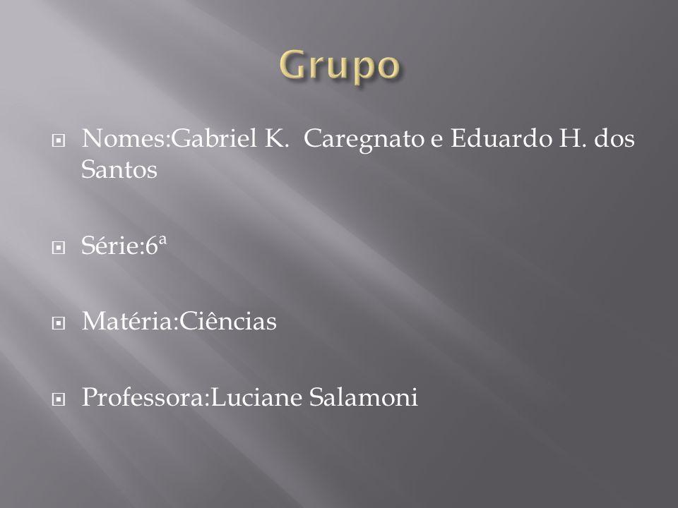 Grupo Nomes:Gabriel K. Caregnato e Eduardo H. dos Santos Série:6ª