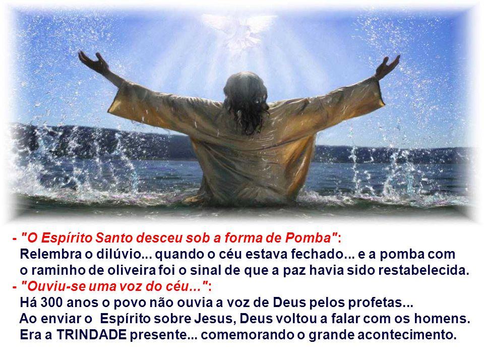 - O Espírito Santo desceu sob a forma de Pomba :