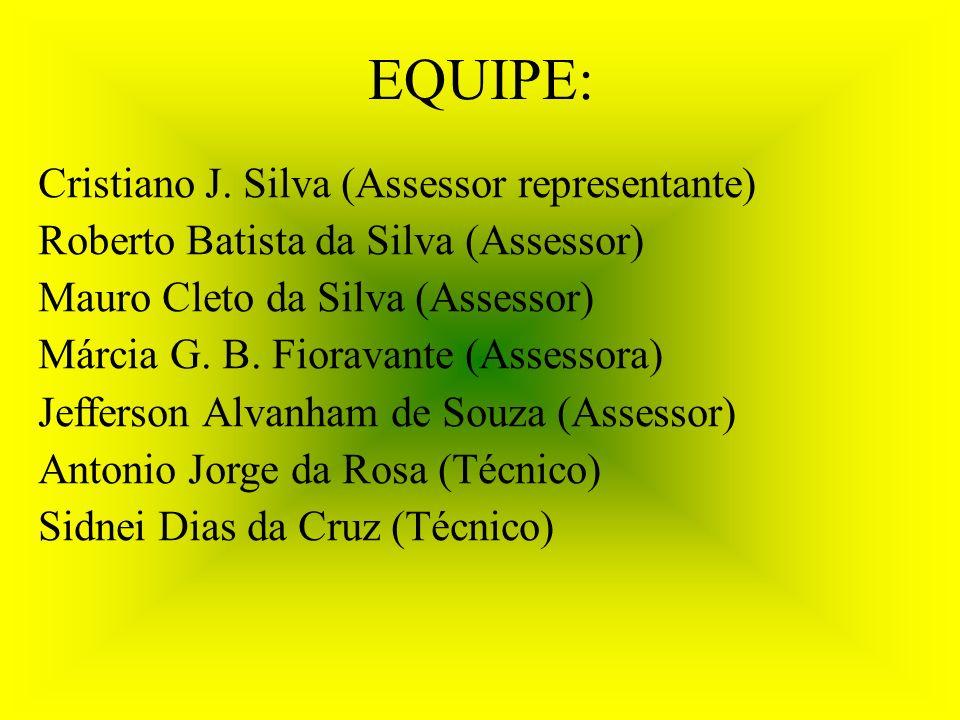 EQUIPE: Cristiano J. Silva (Assessor representante)