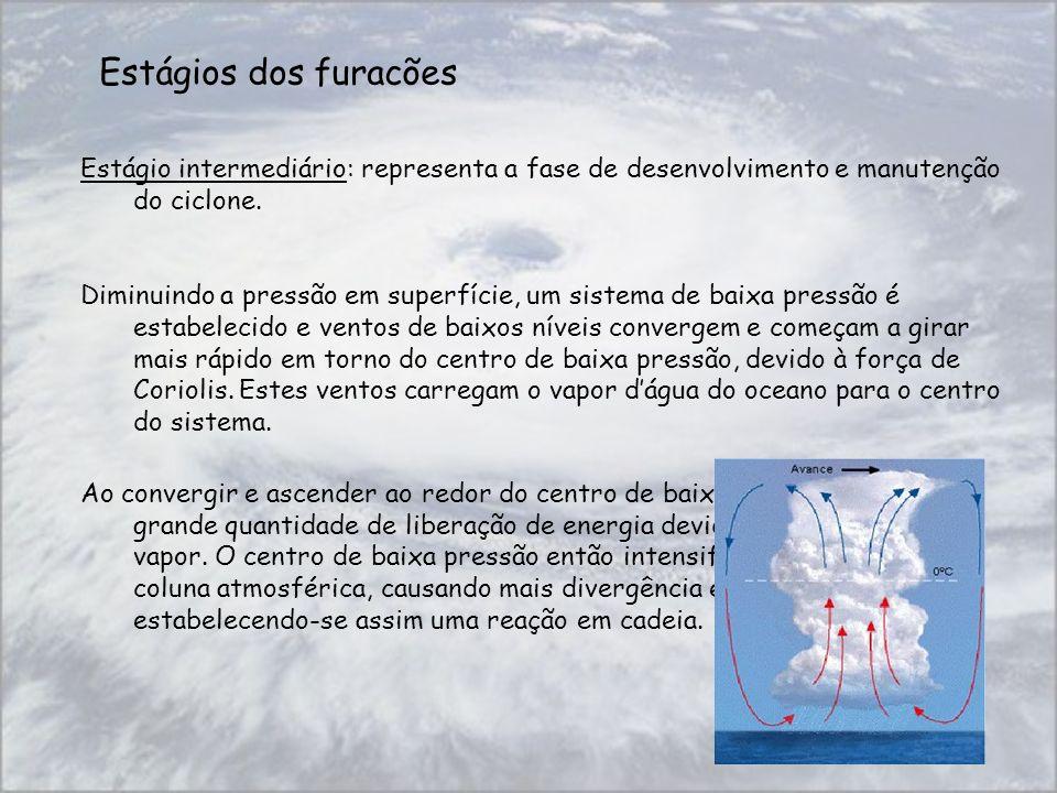 Estágios dos furacões Estágio intermediário: representa a fase de desenvolvimento e manutenção do ciclone.