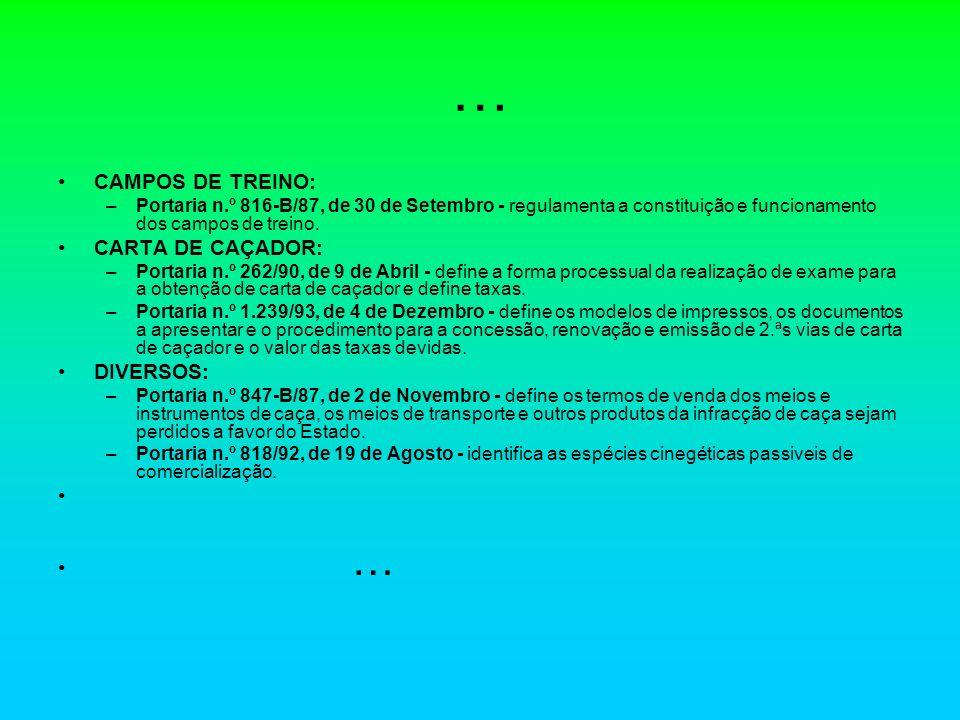 … CAMPOS DE TREINO: CARTA DE CAÇADOR: DIVERSOS: …