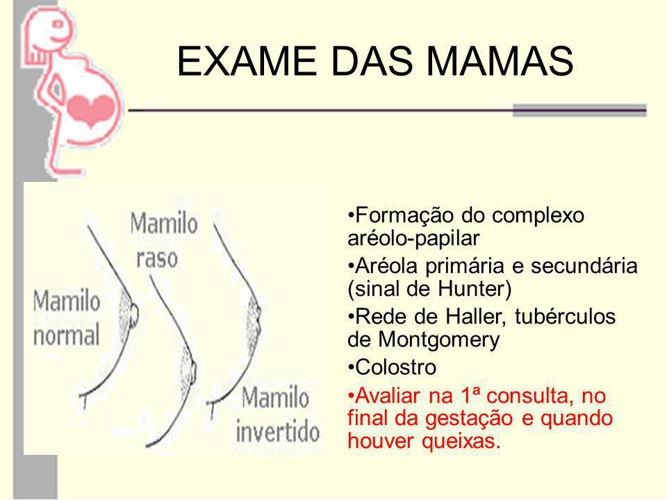 EXAME DAS MAMAS Formação do complexo aréolo-papilar