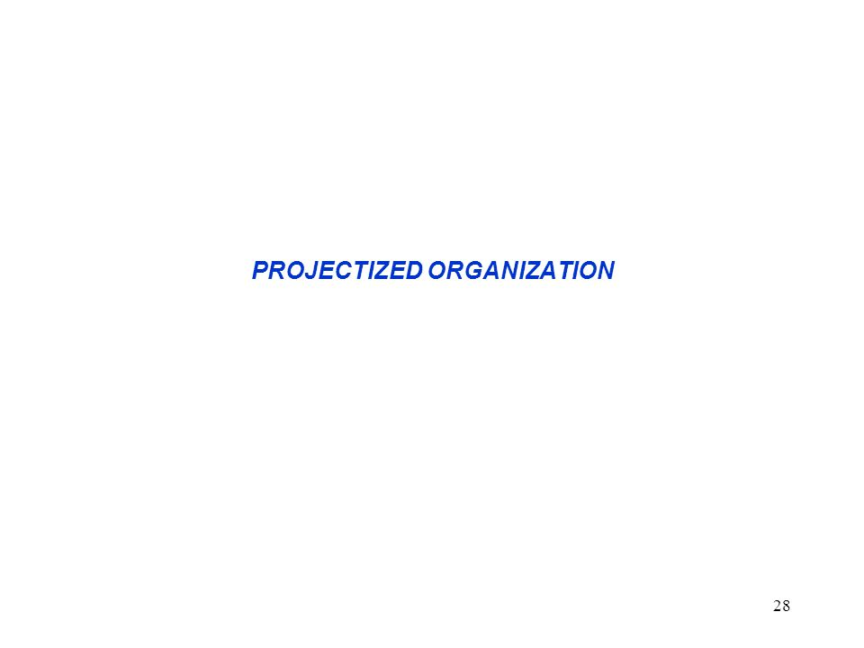 PROJECTIZED ORGANIZATION