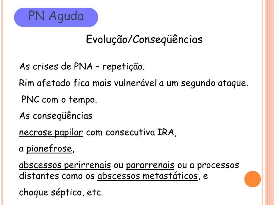 PN Aguda Evolução/Conseqüências As crises de PNA – repetição.