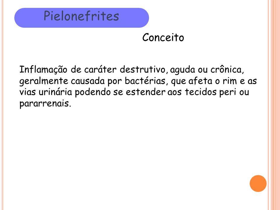 Pielonefrites Conceito