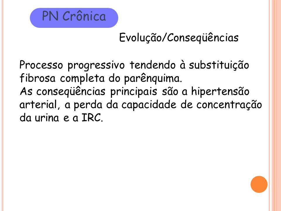 PN Crônica Evolução/Conseqüências
