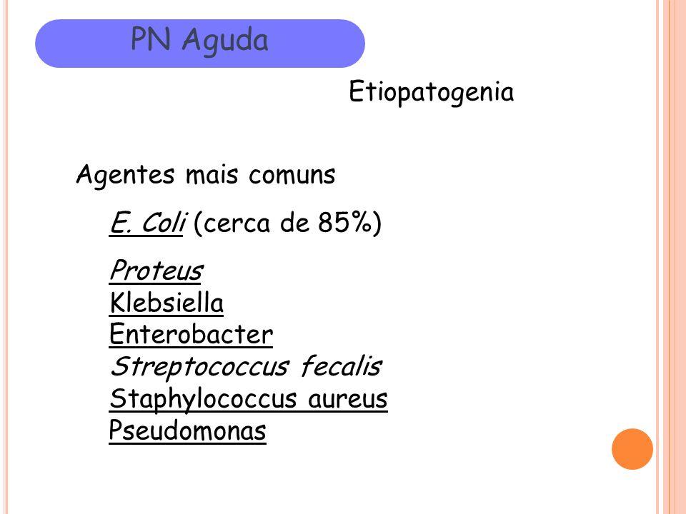 PN Aguda Etiopatogenia Agentes mais comuns E. Coli (cerca de 85%)