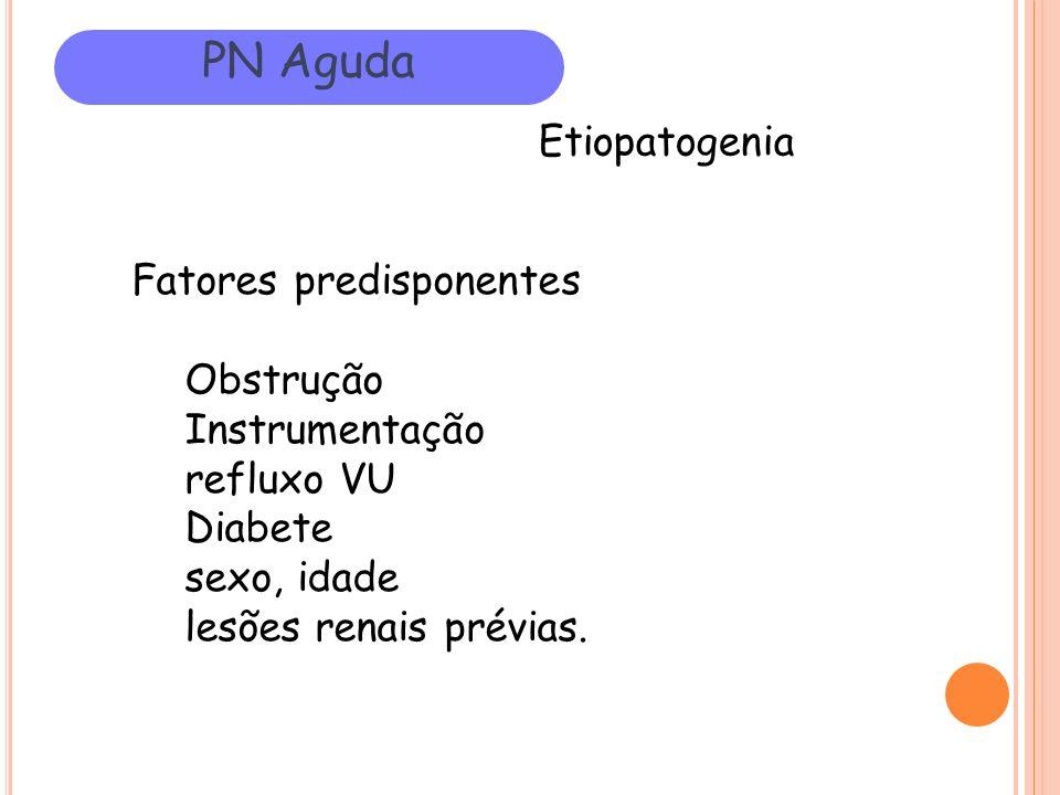 PN Aguda Etiopatogenia Fatores predisponentes Obstrução Instrumentação