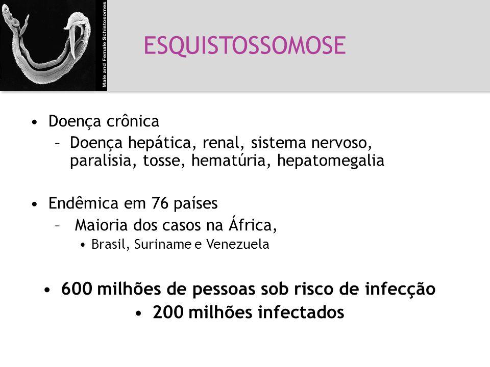 600 milhões de pessoas sob risco de infecção