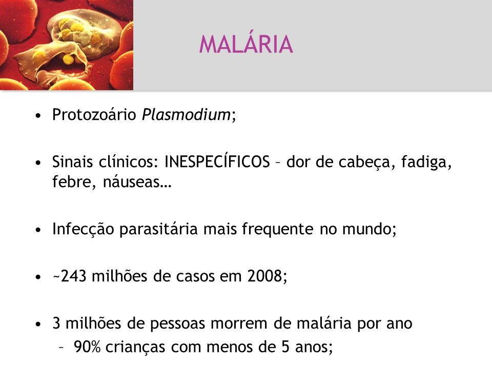 Malária MALÁRIA Protozoário Plasmodium;