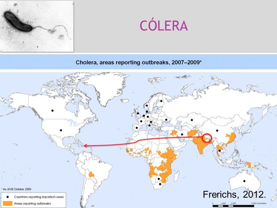 CÓLERA Cólera Vibrio cholerae *Toxina Bactéria, Gram -