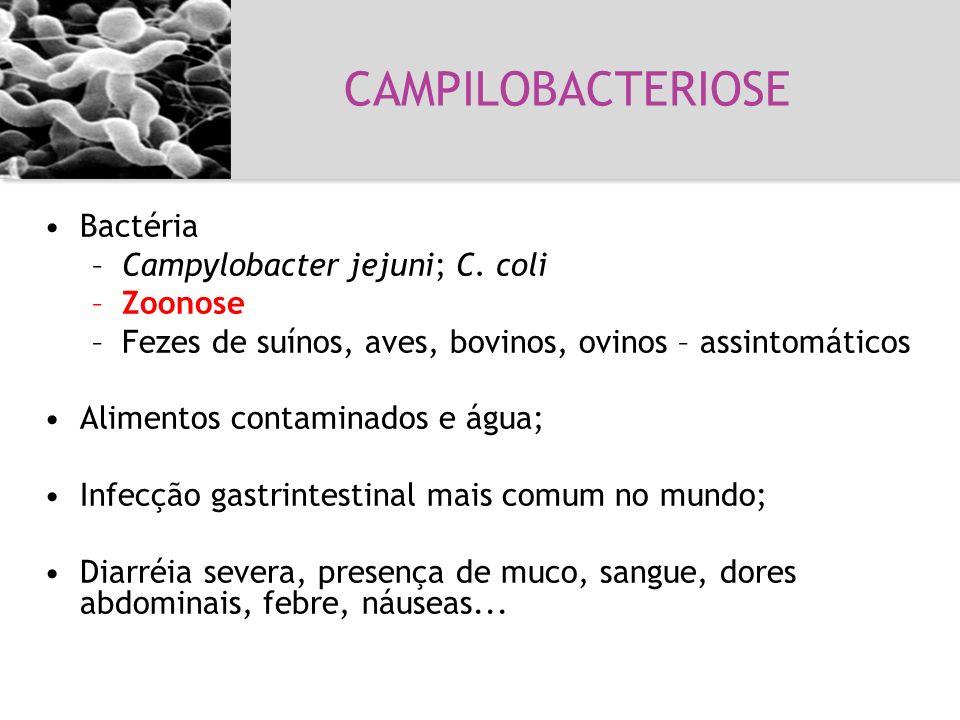 CAMPILOBACTERIOSE Bactéria Campylobacter jejuni; C. coli Zoonose