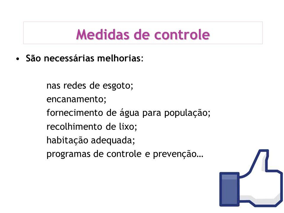 Medidas de controle São necessárias melhorias: nas redes de esgoto;
