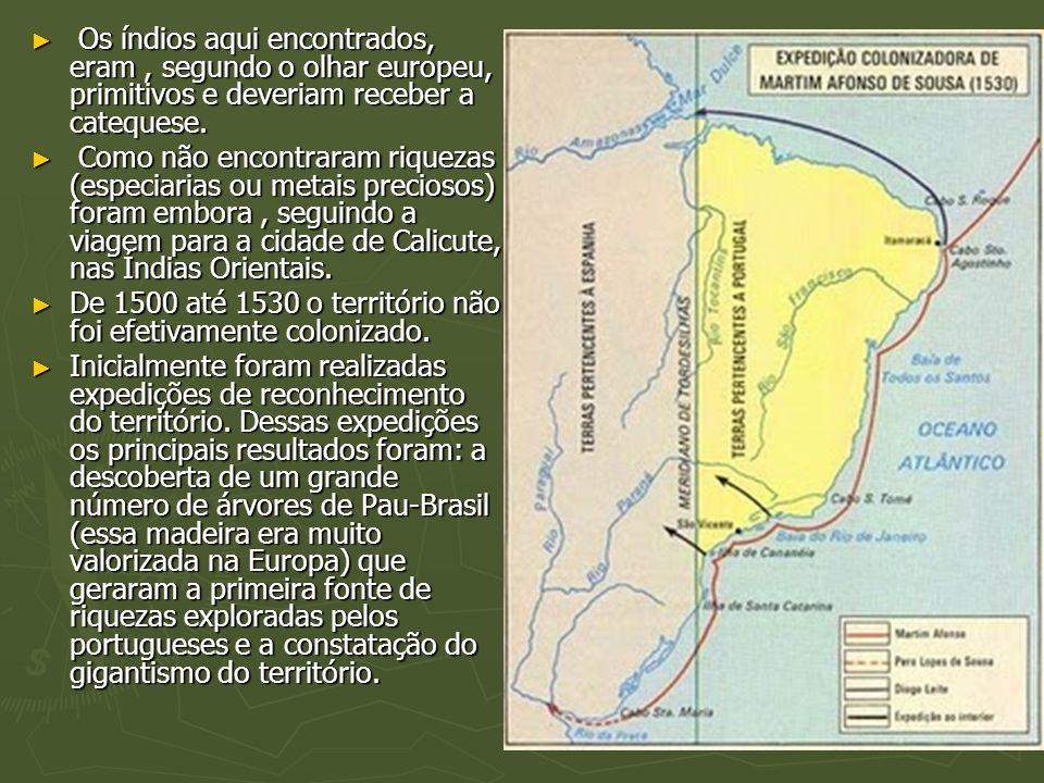 Os índios aqui encontrados, eram , segundo o olhar europeu, primitivos e deveriam receber a catequese.