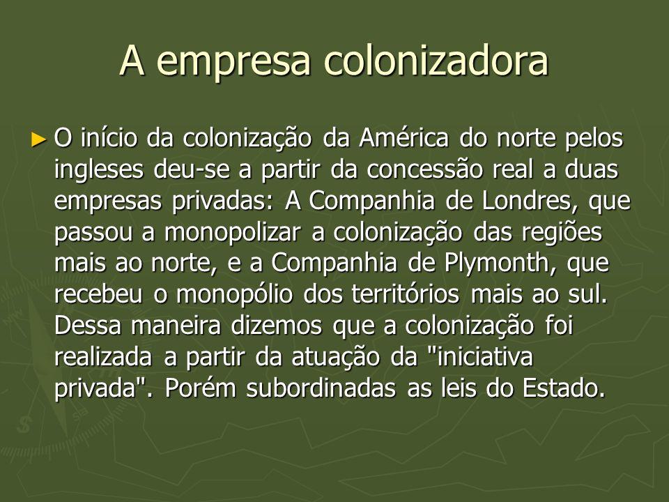 A empresa colonizadora