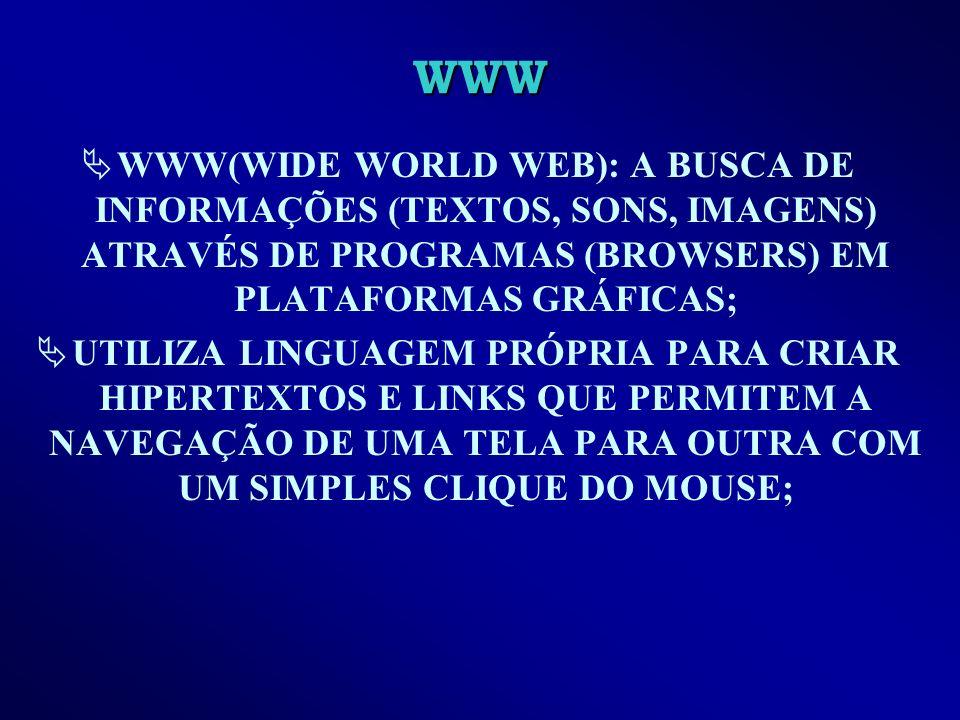 WWW WWW(WIDE WORLD WEB): A BUSCA DE INFORMAÇÕES (TEXTOS, SONS, IMAGENS) ATRAVÉS DE PROGRAMAS (BROWSERS) EM PLATAFORMAS GRÁFICAS;