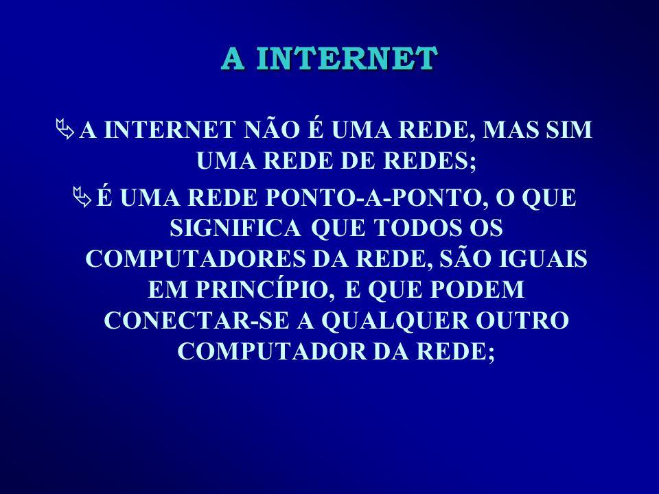 A INTERNET NÃO É UMA REDE, MAS SIM UMA REDE DE REDES;
