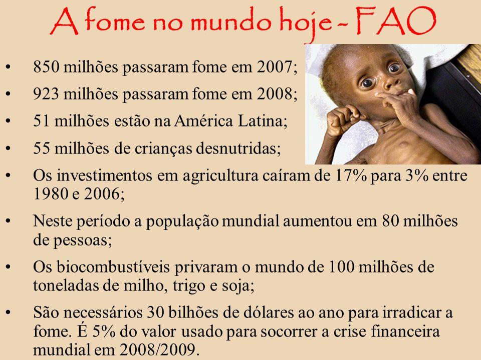 A fome no mundo hoje - FAO