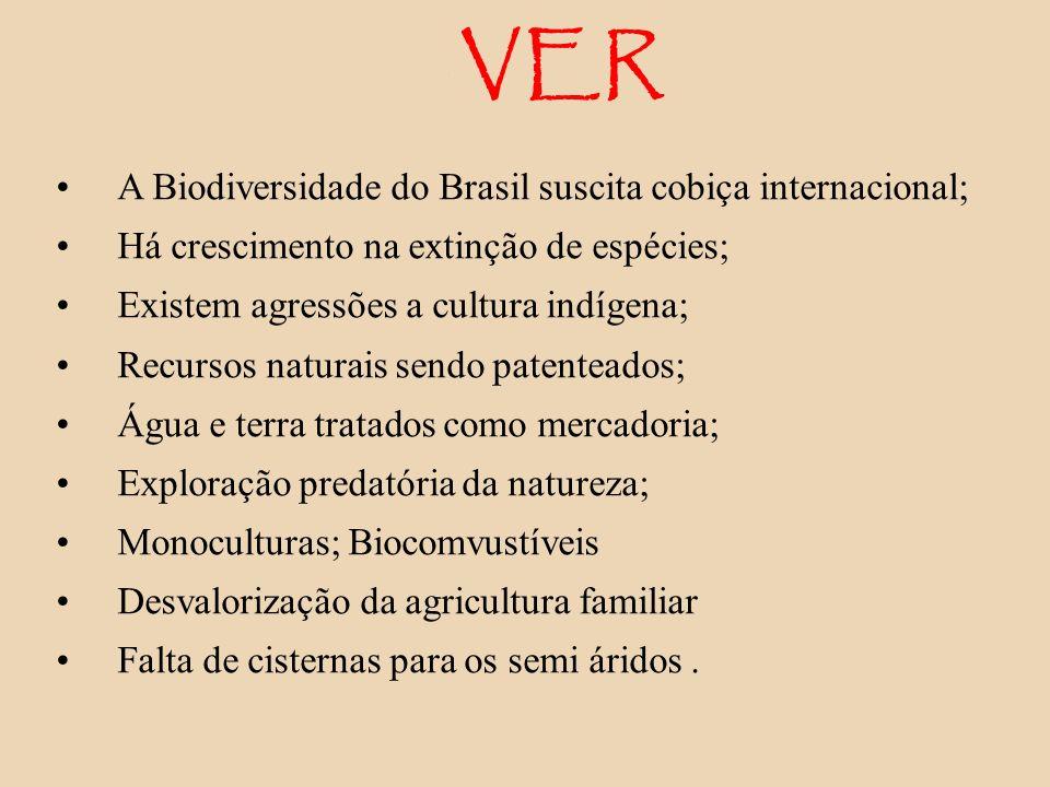 VER A Biodiversidade do Brasil suscita cobiça internacional;