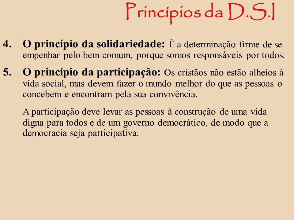 Princípios da D.S.I O princípio da solidariedade: É a determinação firme de se empenhar pelo bem comum, porque somos responsáveis por todos.