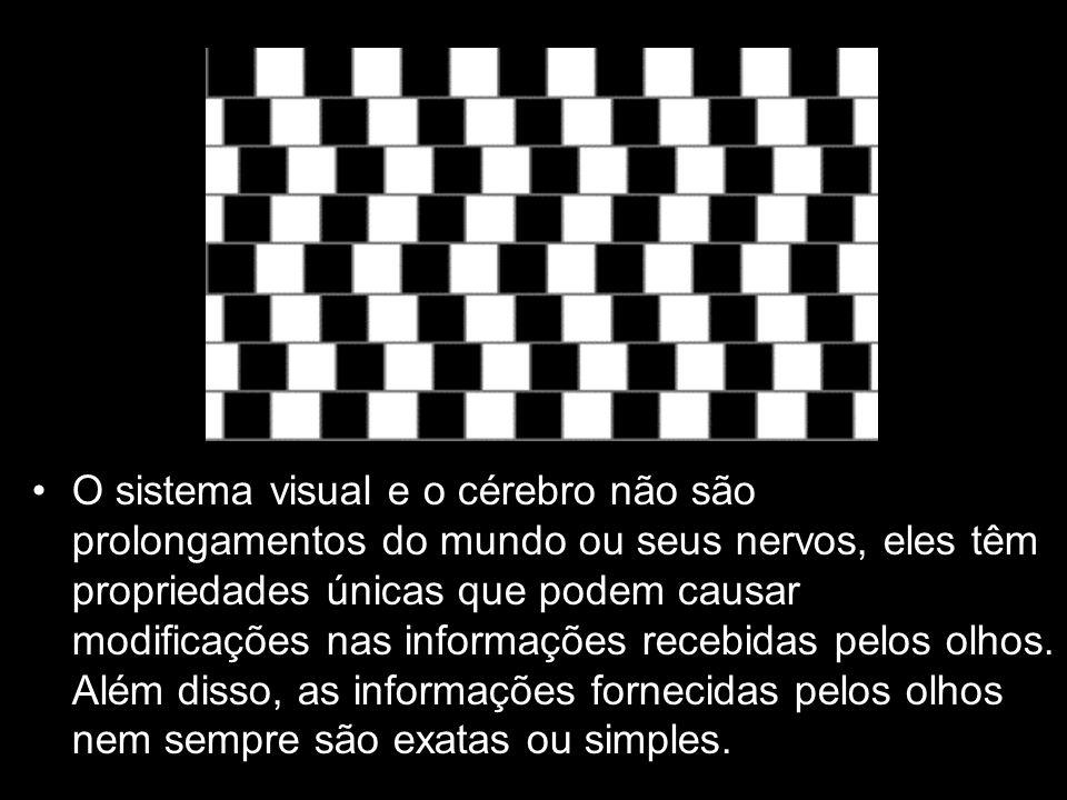 O sistema visual e o cérebro não são prolongamentos do mundo ou seus nervos, eles têm propriedades únicas que podem causar modificações nas informações recebidas pelos olhos.