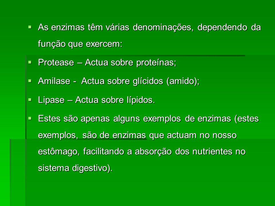 As enzimas têm várias denominações, dependendo da função que exercem: