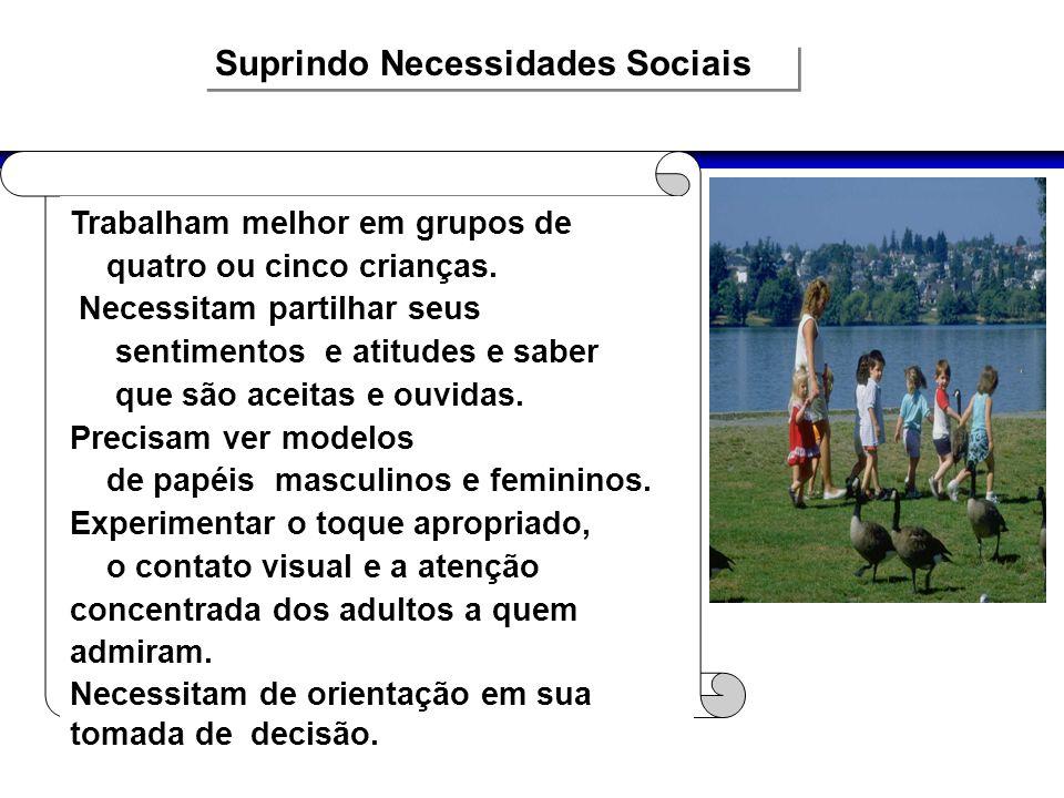 Suprindo Necessidades Sociais