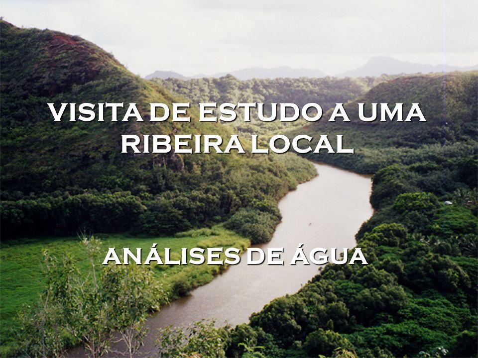 VISITA DE ESTUDO A UMA RIBEIRA LOCAL