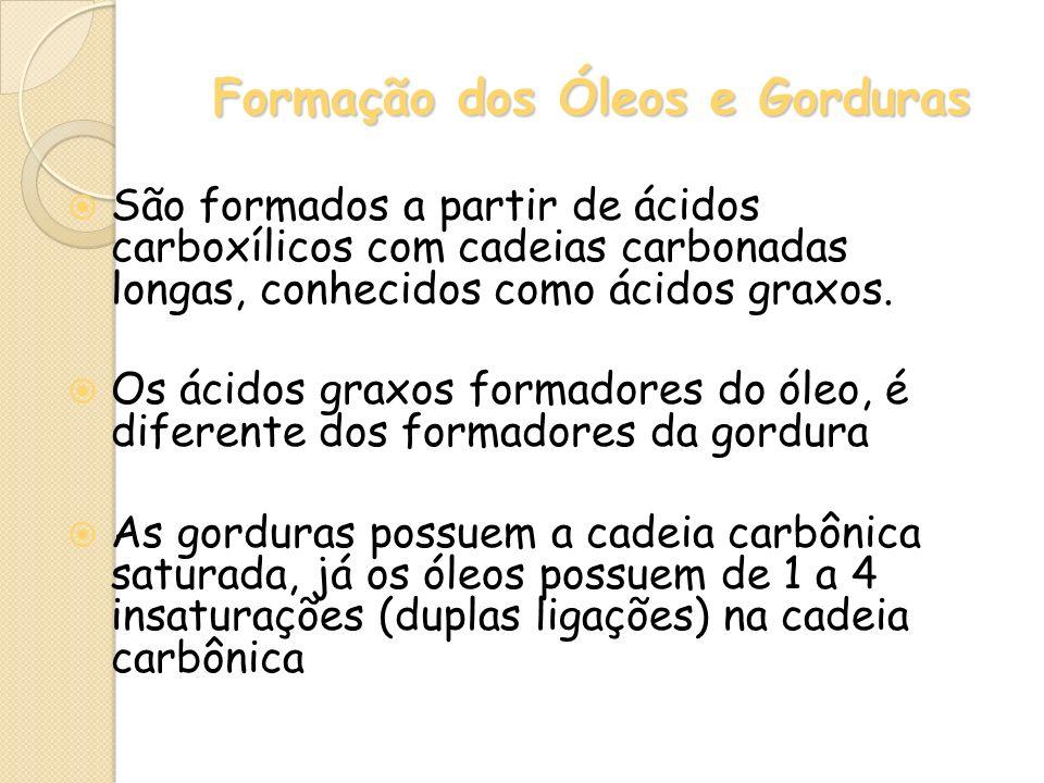 Formação dos Óleos e Gorduras