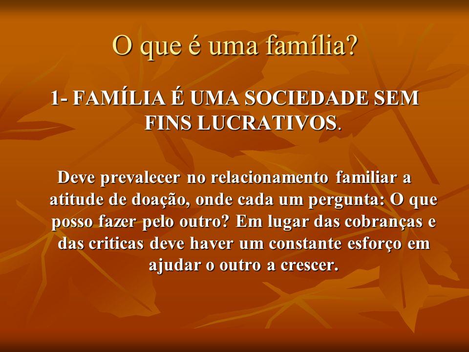 1- FAMÍLIA É UMA SOCIEDADE SEM FINS LUCRATIVOS.
