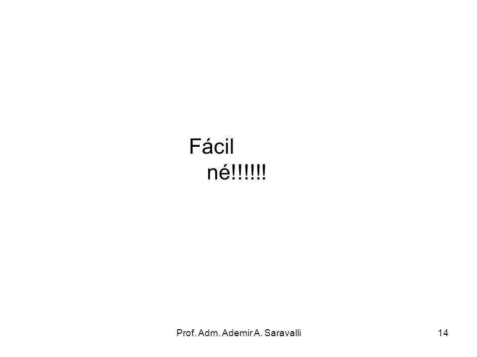 Prof. Adm. Ademir A. Saravalli