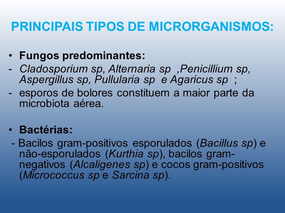 PRINCIPAIS TIPOS DE MICRORGANISMOS: