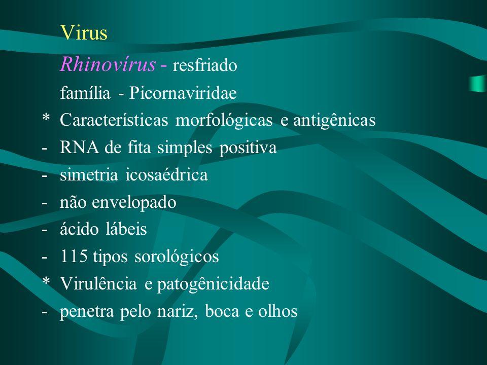 Rhinovírus - resfriado