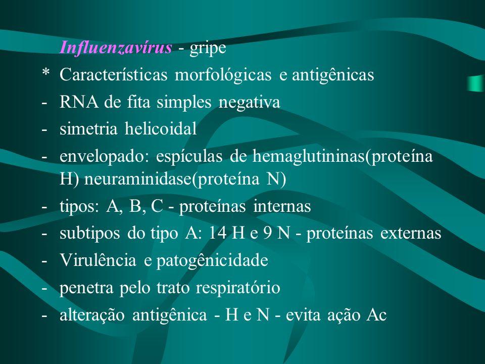 Influenzavírus - gripe