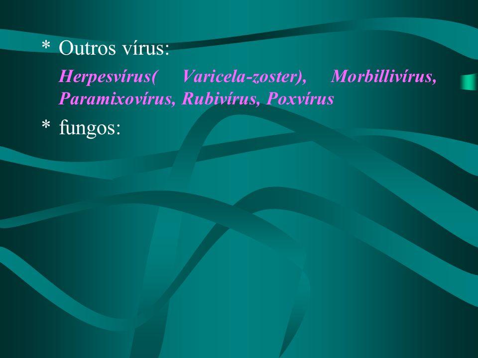 Outros vírus: Herpesvírus( Varicela-zoster), Morbillivírus, Paramixovírus, Rubivírus, Poxvírus.