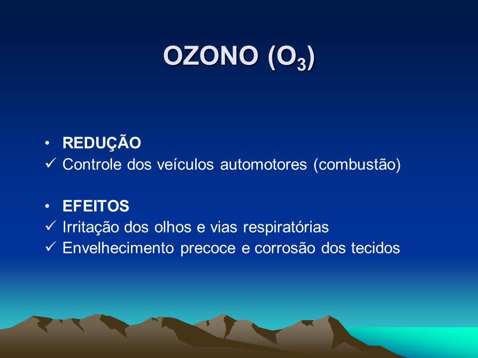 OZONO (O3) REDUÇÃO Controle dos veículos automotores (combustão)