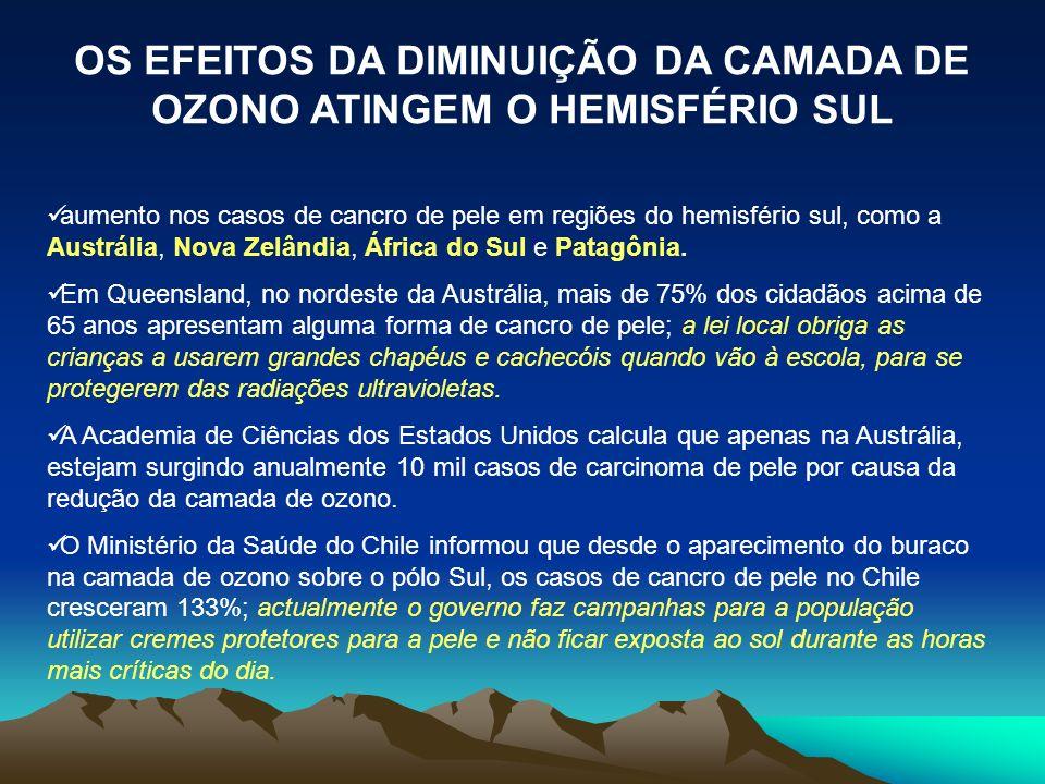 OS EFEITOS DA DIMINUIÇÃO DA CAMADA DE OZONO ATINGEM O HEMISFÉRIO SUL