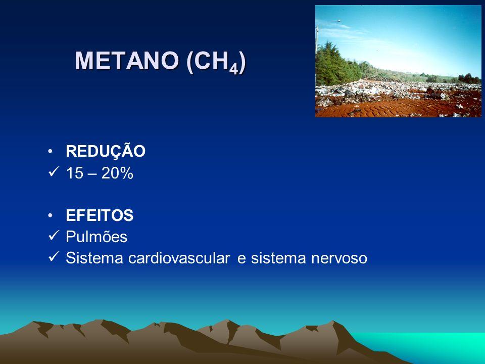 METANO (CH4) REDUÇÃO 15 – 20% EFEITOS Pulmões