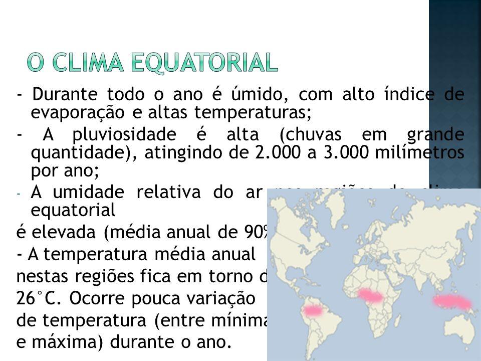 O clima equatorial - Durante todo o ano é úmido, com alto índice de evaporação e altas temperaturas;