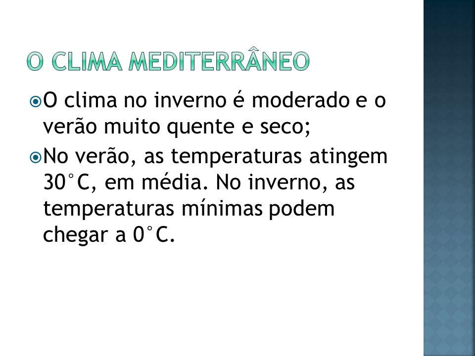 O clima Mediterrâneo O clima no inverno é moderado e o verão muito quente e seco;