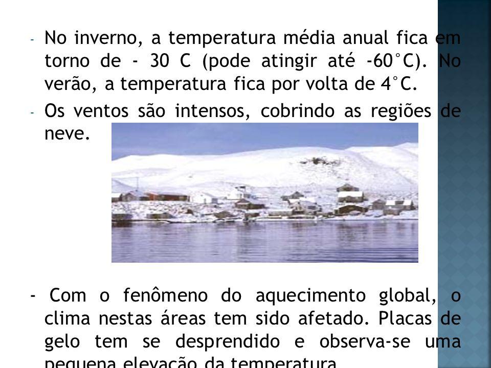 No inverno, a temperatura média anual fica em torno de - 30 C (pode atingir até -60°C). No verão, a temperatura fica por volta de 4°C.