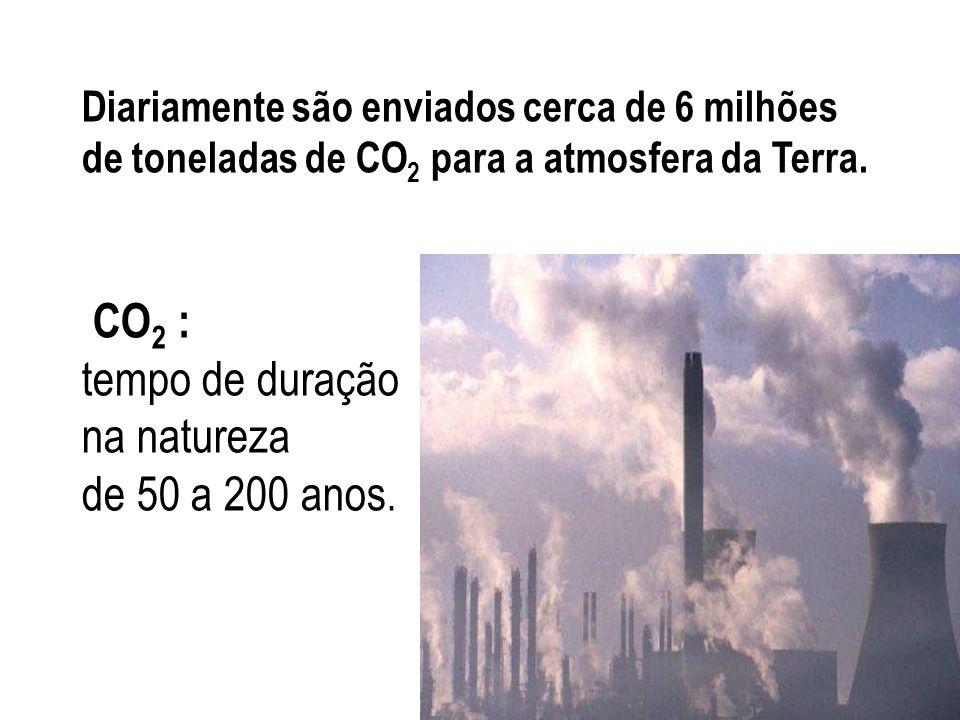 Diariamente são enviados cerca de 6 milhões de toneladas de CO2 para a atmosfera da Terra.