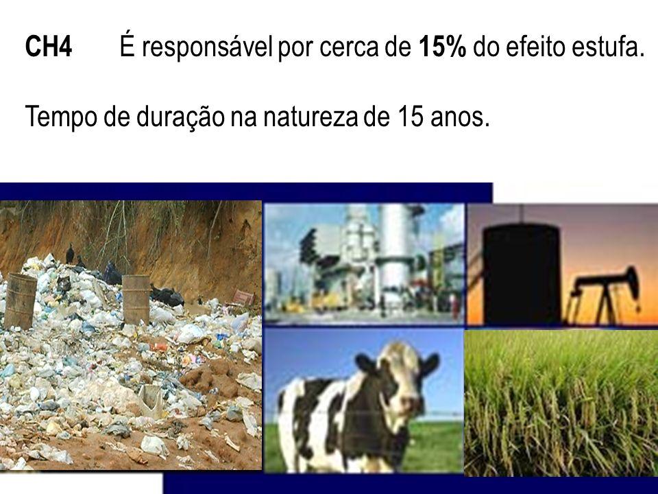 CH4 É responsável por cerca de 15% do efeito estufa