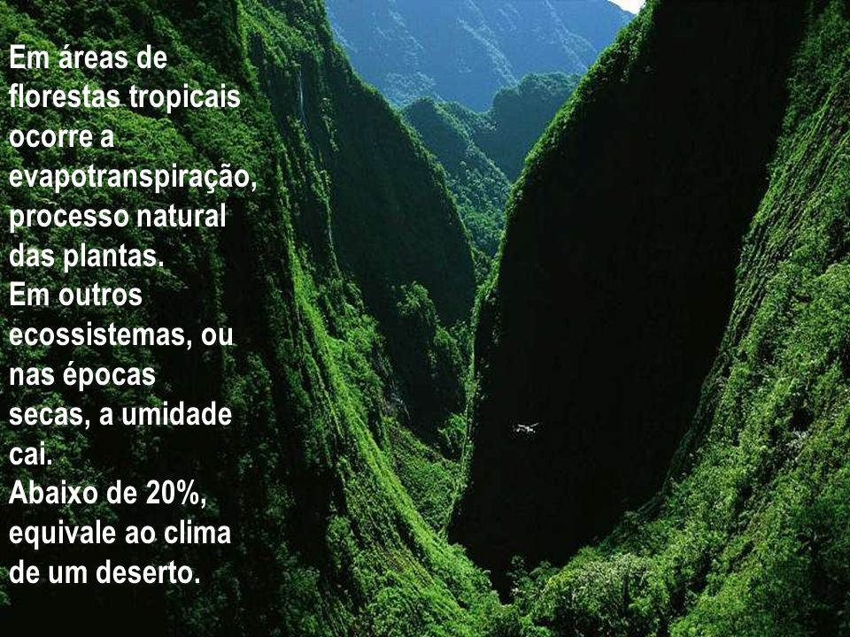 Em áreas de florestas tropicais ocorre a evapotranspiração, processo natural das plantas. Em outros ecossistemas, ou nas épocas.