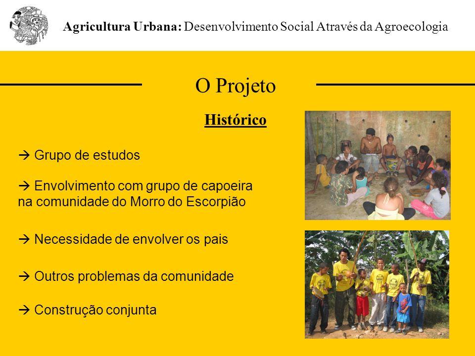 Agricultura Urbana: Desenvolvimento Social Através da Agroecologia