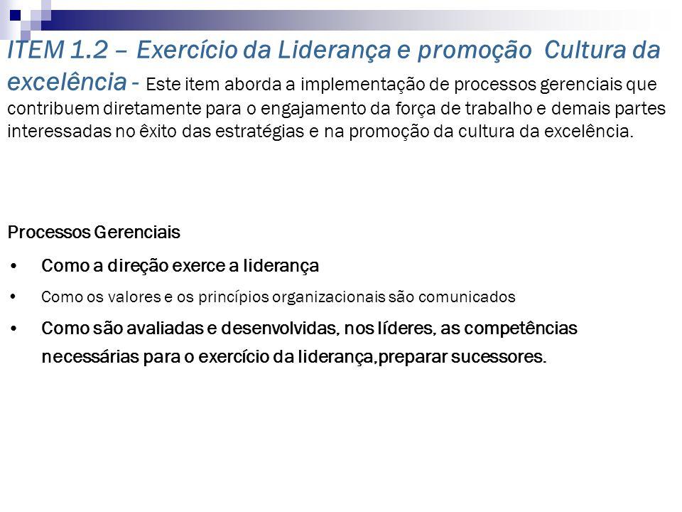 ITEM 1.2 – Exercício da Liderança e promoção Cultura da excelência - Este item aborda a implementação de processos gerenciais que contribuem diretamente para o engajamento da força de trabalho e demais partes interessadas no êxito das estratégias e na promoção da cultura da excelência.