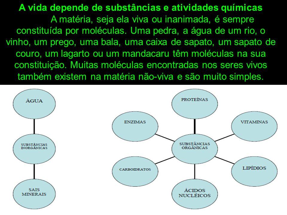 A vida depende de substâncias e atividades químicas